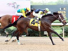 Payton d'Oro(2006)Medaglia d'Oro- Jealous And Jaded By Jade Hunter. 4x5 To Nashua. 19 Starts 6 Wins 7 Seconds 2 Thirds. $573,835. Won 2009 Black Eyed Susan S (G2), 2011 Ogden Phipps H(G1), Molly Pitcher S(G2).
