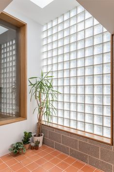 Victorian Home Interior Gallery of Block House / nimtim architects - 7 Glass Blocks Wall, Interior And Exterior, House Design, Simple Kitchen Design, Interior Design Bedroom, Glass Blocks, House Interior, Victorian Homes, Victorian Terrace House