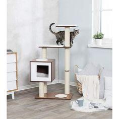 Modern Cat Furniture, Pet Furniture, Furniture Deals, Wooden Cat Tree, Cat Scratching Post, Cat Condo, Thing 1, Cat Room, Pet Home