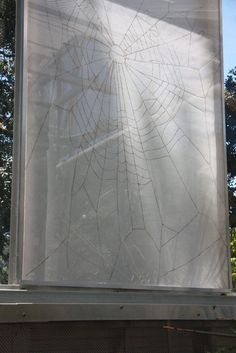 In the 1960's, Dr Peter Witt administered commonly used psychotropic drugs to spiders to investigate how it affected their web building. Wight has taken his documentation of the results, and then used sunlight and a magnifying glass to burn replicas of the resulting webs into vellum, inadvertently creating small holes which allow the sun to pour through the drawings. The large drawings were installed in the glass arid house, home of many spiders and some of Witt's psychotropic plants. Magnifying Glass, Nerdy Things, Spiders, Botanical Gardens, Sunlight, Drugs, Science, History, Natural