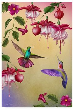 Humming Birds And Acrylic Print by Jean Plout. All acrylic prints are professionally printed, packaged, and shipped within 3 - 4 business days and delivered ready-to-hang on your wall. Choose from multiple sizes and mounting options. Artist Canvas, Canvas Art, Hummingbird Painting, Illustration, Polychromos, Fabric Painting, Beautiful Birds, Flower Art, Fine Art America