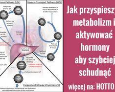 Woda alkaliczna zabija raka – oto jak ją przygotować | hotto.pl, domowe sposoby popularne w necie