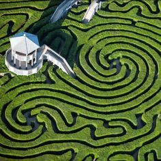 Longleat Hedge Maze in Wiltshire, England.