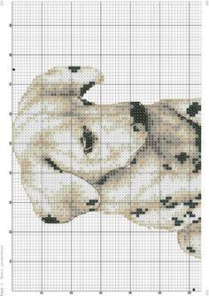 Animals-Zz dalmation (bbj2029) 3/3