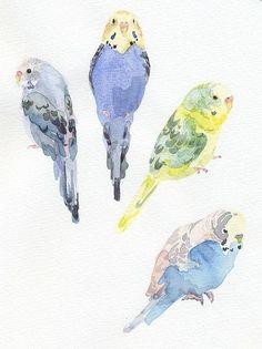 what adorable little birds! Watercolor Bird, Watercolor Animals, Watercolor Paintings, Watercolours, Guache, Bird Pictures, Art Design, Art Sketchbook, Bird Art