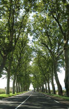 Beaune, France: the beating heart of Burgundy.