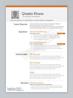 standard cv templates standard cv resume templates resume templates
