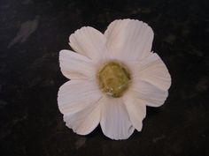 Hand crafted sugar daisy