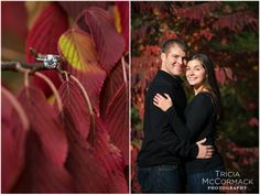 Erica and Corey's Fall Engagment Session - Berkshire MA - Tricia McCormack Photography