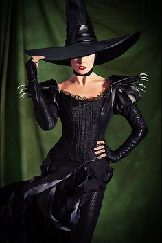 Limited Edition Wicked Witch of the West Costume for Adults (Pre-Order) # & 257 best Costume ideas images on Pinterest | Artistic make up ...