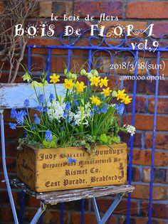 BOIS DE FLORA vol,9(ボワフロ9)開催決定!
