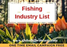 Reach your targeted IT people globally with effective and accurate Information Technology Mailing Lists. Global Business, Business Goals, Email Campaign, Job Title, Target Audience, Email List, Information Technology, Over The Years, Things That Bounce