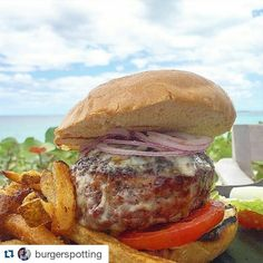 #Repost @burgerspotting with @repostapp ・・・ Cheeseburger in paradise unfortunatly the burger not as amazing as the place. Dry bun and strange beef, texture wrong, onions, tomato, ok homemade russian style sauce,  fontina cheese (5/10) #oneandonly #bahamas #cheeseburger #burgers #cheeseburgers #bestburgers #burgerspotting #hamburgers #iloveburgers #Maxhamburgare #maxburger