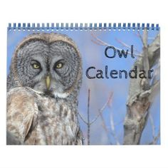 Animal Owl Bird Life Office Home Destiny'S Destiny Calendar - unusual diy cyo customize special gift idea personalize #anniversarygifts