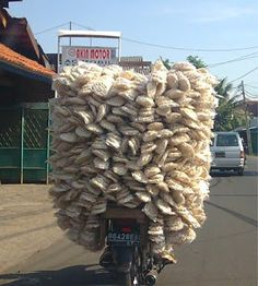 delivery ....