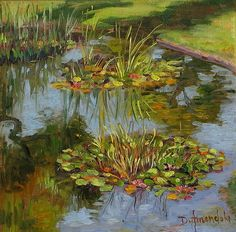 Water lilies in California oil painting in plein air by Dominique Amendola