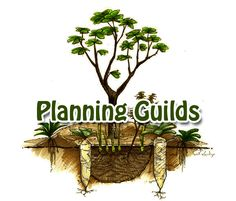 Permaculture Tip of the Day - Three Quick Methods for Planning Guilds - School of Permaculture