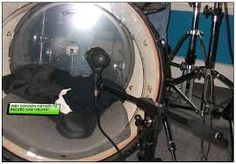Most common method for recording Kick Drums!