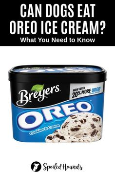 Can dogs eat Oreos? Keep your dog safe and find out what you need to know about dogs eating Oreo cookies and ice cream. #dogsafety #doghealth #dogs #doglovers #doginformation #dogownertips #pethealth #oreos #oreoicecream Can Dogs Eat Strawberries, Strawberries And Cream, Dog Cookies, Oreo Cookies, Chocolate Wafers, Chocolate Cookies, Can Dogs Eat Lemons, Can Dogs Eat Pumpkin, Strawberry Oreos