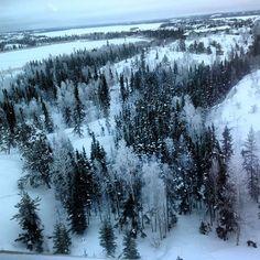 Un matin givré sur #Yellowknife