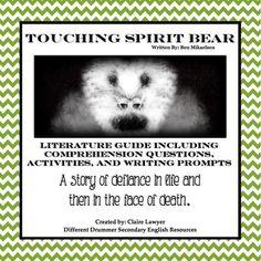 Touching spirit bear essay example