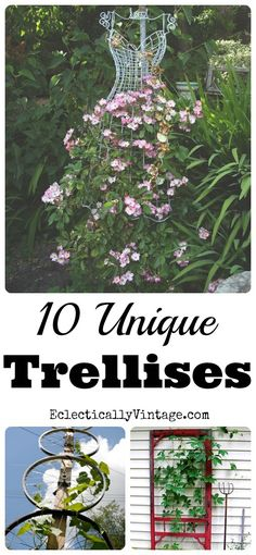 10 Unique Trellis Ideas - I am definitely doing a few of these! eclecticallyvintage.com