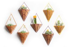 Mini hanging planter from HEDGE