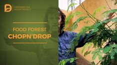 Desert Food Forest Chop-and-Drop