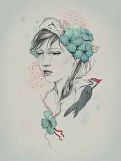 Ilustraciones por Diego Fernández