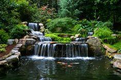 water garden designrulz (1)