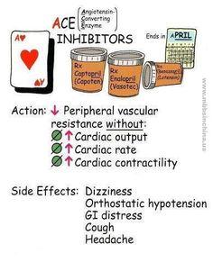Ace inhibitors, pharmacology