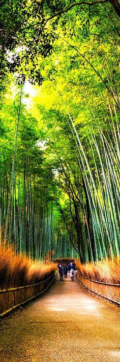 Arashiyama – Kyoto, Japan