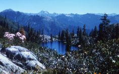 Marble Mountain Wilderness, Pleasant Lake