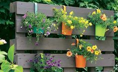 Creative idea: This is how pallets turn into a blossoming screen - Paletten - Balcony Furniture Design Herb Garden Pallet, Diy Herb Garden, Pallets Garden, Garden Pots, Pallet Gardening, Cheap Garden Fencing, Diy Fence, Fence Ideas, Backyard Fences