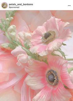 Paradise City, Glow, Flowers, Plants, Plant, Sparkle, Royal Icing Flowers, Flower, Florals