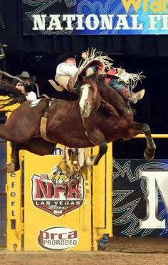 Rodeo Cowboys, Real Cowboys, Cowboy Pictures, Horse Pictures, Cowboy Art, Cowboy And Cowgirl, Country Girl Truck, Bareback Riding, Rodeo Events