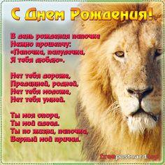 Поздравление с днем рождения будь сильным как лев