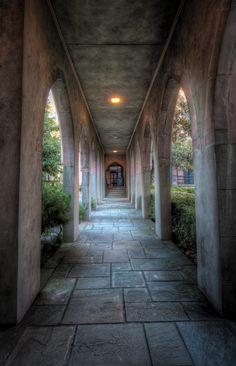 Photographing Walkways in Savannah Georgia