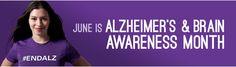 June is Alzheimer's and Brain Awareness month! Show your support! Alzheimer's Brain, Alzheimers Awareness, June, Decor, Decoration, Decorating, Deco