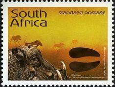 Stamp: Desert Warthog (Phacochoerus aethiopicus) (South Africa) (Animal Tracks - Stories in the Sand) Mi:ZA 1722,Sn:ZA 1364i