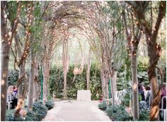 An aisle of fairly light swathed trees Hartley Botanica Wedding Photography | Simi Valley Film Photography | Sara and Chris