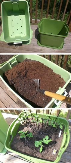 20 Insanely Clever Gardening Tips And Ideas - 5. Rubbermaid Container Garden - Just because you don't have much of a yard doesn't mean you can't have a nice little garden going. Rubbermaid storage containers are lightweight and just the right size to get you started. Fill the bottom with packing peanuts and a layer of garden fabric to keep them easy to move. This could even work on a small apartment balcony…