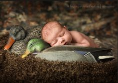 This is exactly what I plan to do with our baby boys to go with our duck nursery. Daddy will be tickled pink. :)