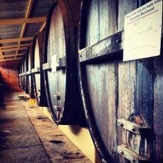 Wedding Arrival At The Seppeltsfield Old Distillery Barossa Valley