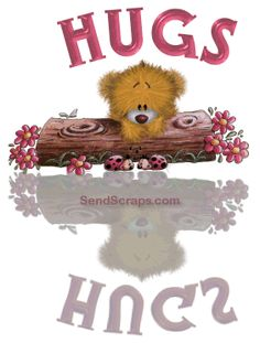 ᐅ Top 59 Hugs images, greetings and pictures for WhatsApp - SendScraps Hug Pictures, Teddy Pictures, Hugs And Kisses Quotes, Hug Quotes, Hug Images, Sweet Hug, Blue Nose Friends, Cute Teddy Bears, Gifs