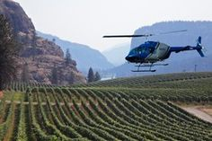 For the ultimate wine tasting experience, come visit Blue Mountain Vineyard & Cellars this summer with Valhalla Helicopters. Best Helicopter, Wine Tasting Experience, Hills Resort, O Canada, Blue Mountain, Wine Country, British Columbia, Vineyard, Scenery