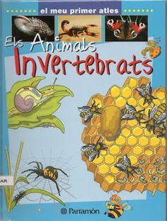 Llibre dels invertebrats. Ed. Perramon