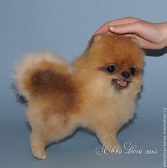 Купить Шпиц Масяня - бежевый, собака, шпиц, Валяние, собака шпиц, скульптура из шерсти