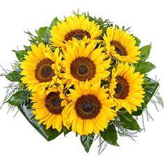 Valentins, Sonnenblumen