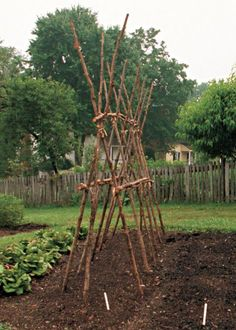 Lashed poles, hoops,l and sticks give vining beans and tomatoes handsome support. These structures, from the gardens of historic Old Salem, a Moravian village in Winston-Salem, North Carolina, are a useful addition to your veggie garden.